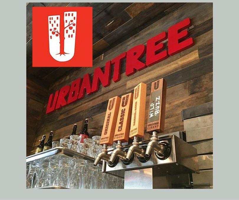 urban tree blog image